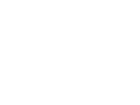 Logo dutch digital delta